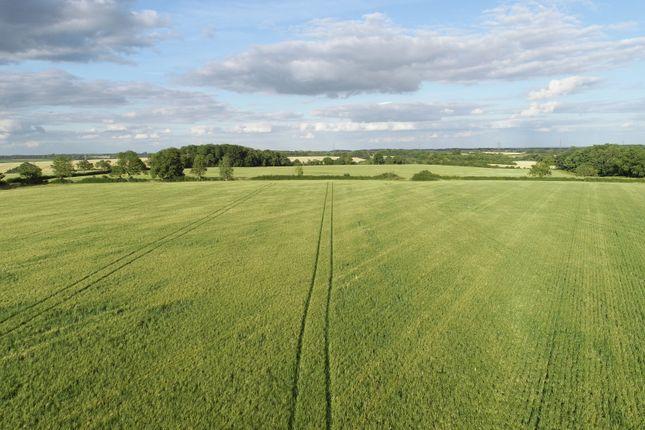 Arable Field of Holywell Road, Clipsham, Oakham, Rutland LE15