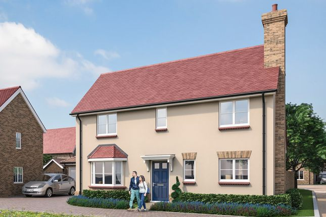 "Thumbnail Property for sale in ""The Danbury"" at Park Drive, Maldon, Essex"