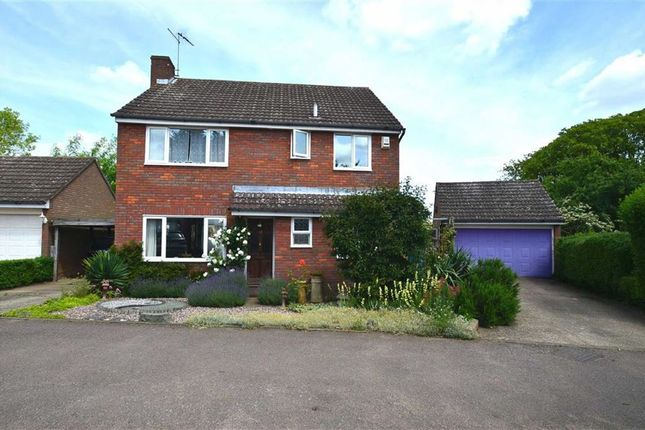 Thumbnail Detached house to rent in Norton Green, Stevenage