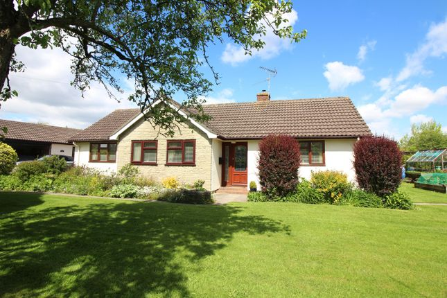 Thumbnail Detached bungalow for sale in Camp Road, Oldbury-On-Severn