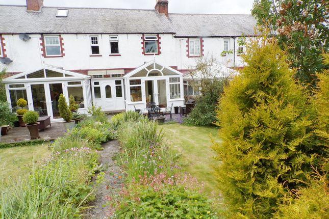 Thumbnail Terraced house for sale in The Terrace, Settlingstones, Hexham