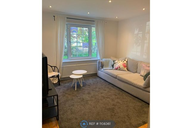 Thumbnail Semi-detached house to rent in Grosvenor Road, London