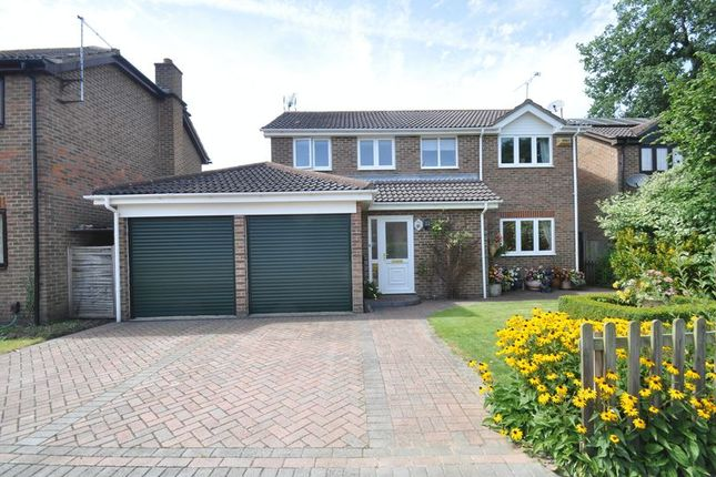 Thumbnail Detached house for sale in Mcnaughton Close, Farnborough