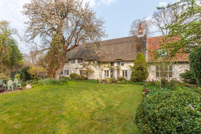 Thumbnail Detached house for sale in Saxlingham Lane, Tasburgh, Norwich