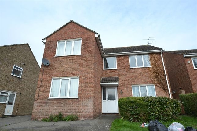 Thumbnail Detached house to rent in Forest Road, Colchester, Essex