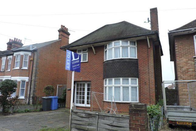 Thumbnail Property to rent in Norwich Road, Ipswich