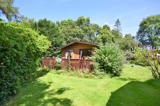 Thumbnail Property for sale in 29, The Orchard, Plas Dolguog, Machynlleth