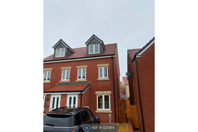 Thumbnail Semi-detached house to rent in Pintail Avenue, Bridgwater