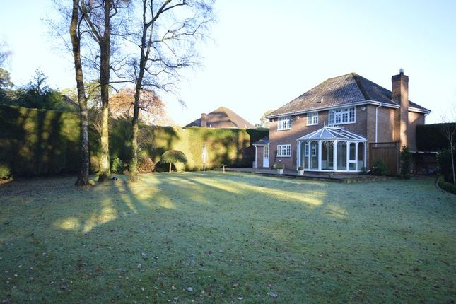 Thumbnail Detached house to rent in Tudor Close, Grayshott, Hindhead