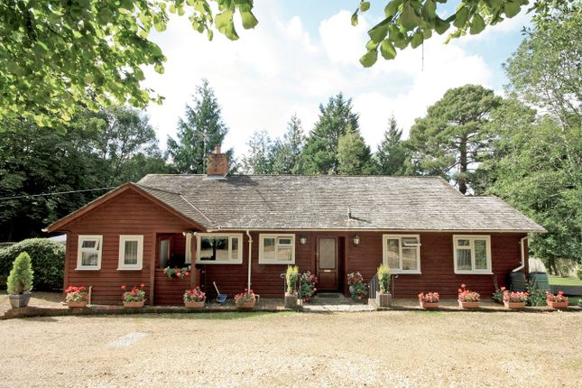 Thumbnail Cottage for sale in The Cross, Burley, Ringwood