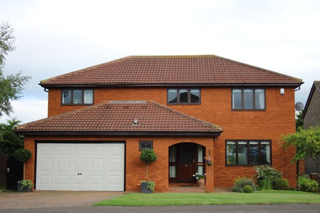 Thumbnail Detached house for sale in Low Green, Woodham