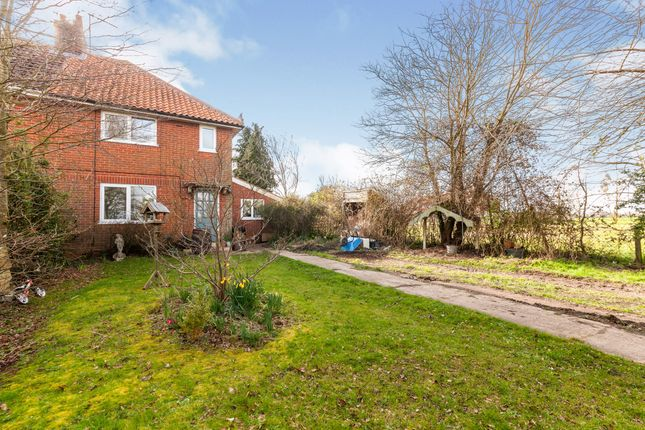 Thumbnail Semi-detached house for sale in All Saints South Elmham, Halesworth, Suffolk