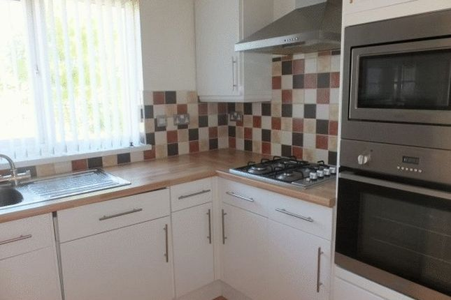 Thumbnail Flat to rent in Ty Box Close, Pontnewydd, Cwmbran