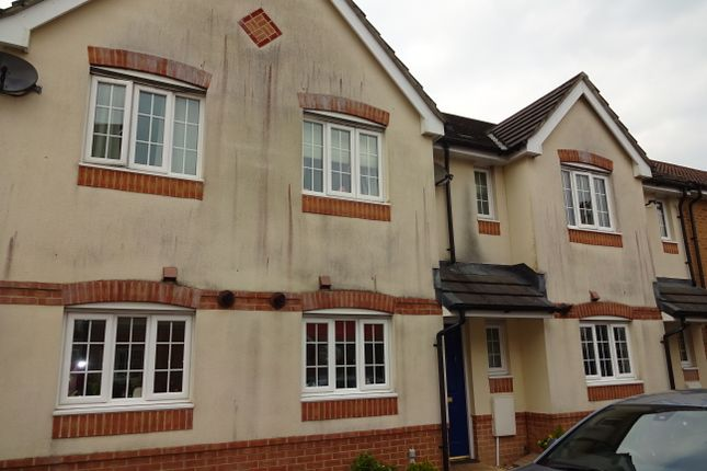 Thumbnail Terraced house to rent in Percivale Road, Yeovil, Yeovil, Somerset
