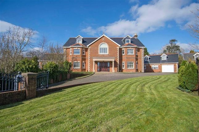 Thumbnail Detached house for sale in The Gables, Three Crosses, Swansea