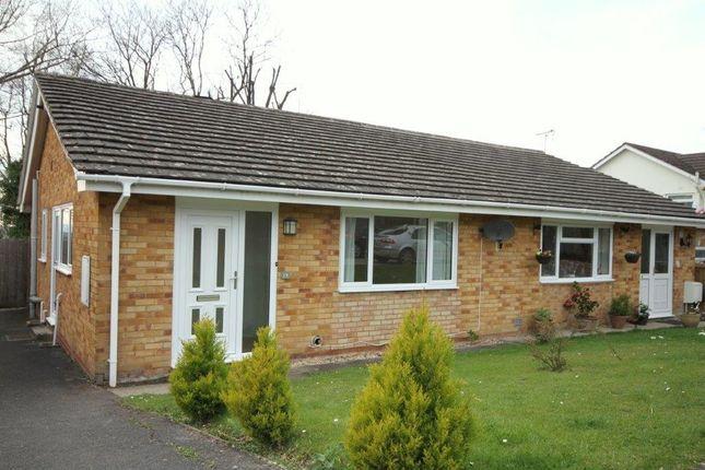 2 bed bungalow to rent in Oakhurst Rise, Charlton Kings, Cheltenham