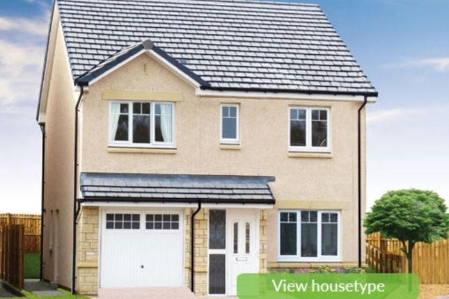 Thumbnail Detached house for sale in Alloa Park Drive, Alloa
