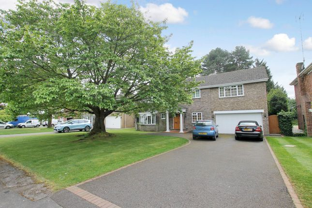 Thumbnail Detached house to rent in Pine Walk, Cobham