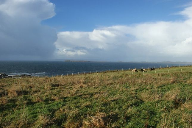 Thumbnail Land for sale in North Beachmore, Muasdale, By Campbeltown