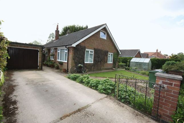 Thumbnail Detached bungalow for sale in Butt Lane, Tickton, Beverley