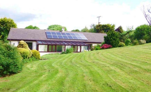 Thumbnail Detached bungalow to rent in The Mounts, East Allington, Totnes