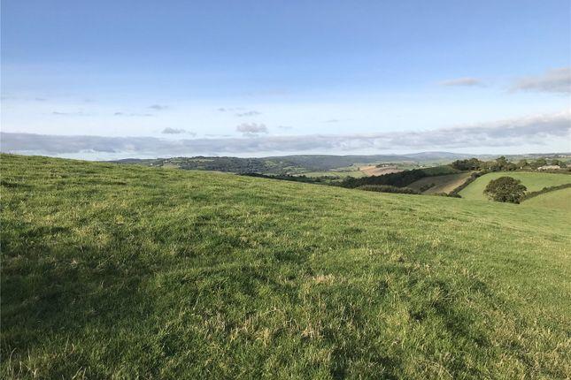 Pasture Land 2 of Longdown, Exeter, Devon EX6