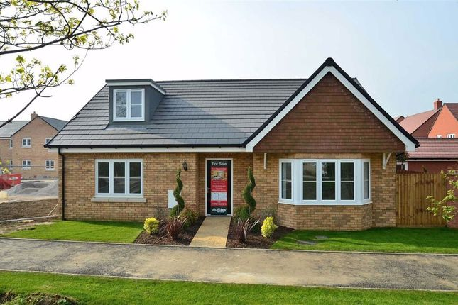 Thumbnail Detached bungalow for sale in Fraser Road, Priory Business Park, Bedford
