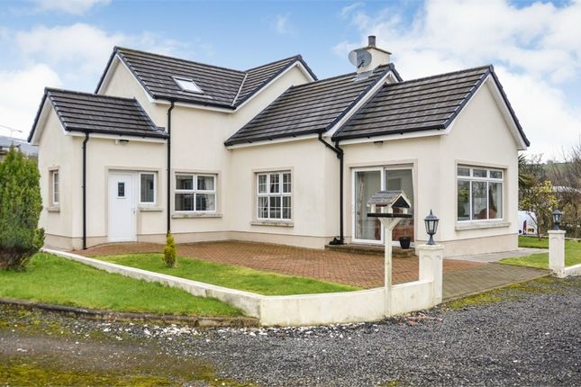 Thumbnail Detached house for sale in Starbog Road, Kilwaughter, Larne, County Antrim