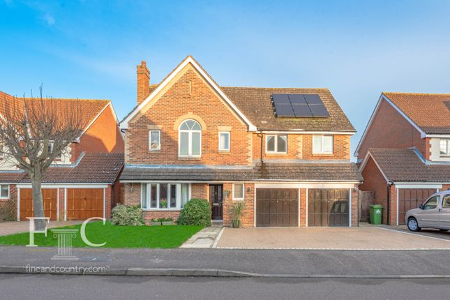 Thumbnail Detached house for sale in Broxbourne, Hertfordshire