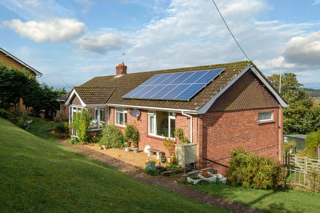 Thumbnail Detached bungalow for sale in Calbourne Road, Newport