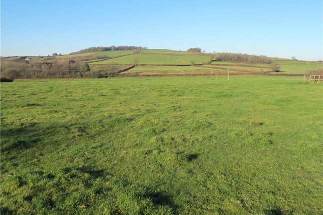 Thumbnail Land for sale in Whites Meadow, Mosterton, Beaminster