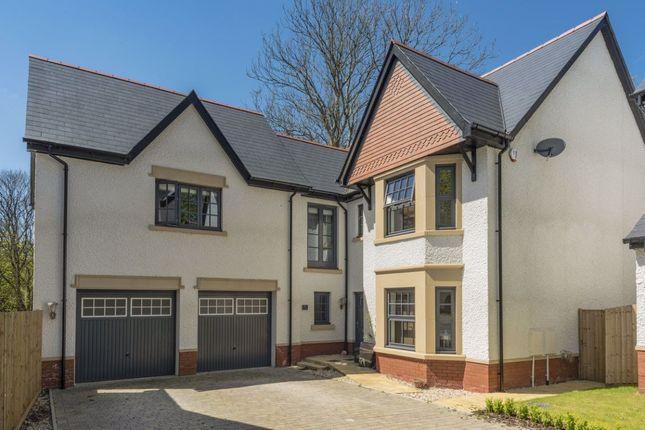 Thumbnail Property to rent in Ynysnewydd Road, Derwen Fawr, Sketty, Swansea