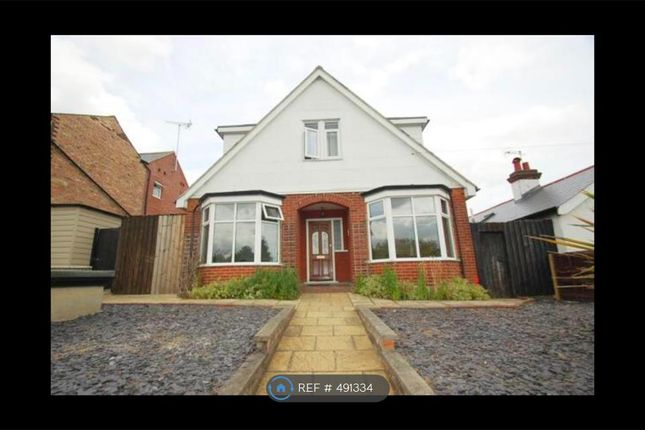 Thumbnail Detached house to rent in Elmstead Road, Colchester