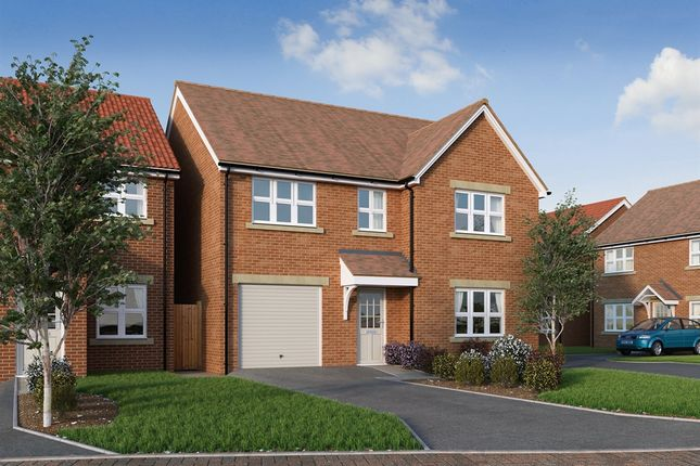 """Thumbnail Detached house for sale in """"The Harley """" at Princess Gardens, Grove, Wantage"""