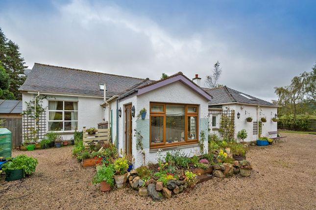 Thumbnail Bungalow for sale in Glenrinnes, Keith