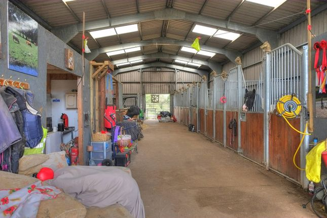 Thumbnail Equestrian property for sale in Thurning Road, Briston, Melton Constable