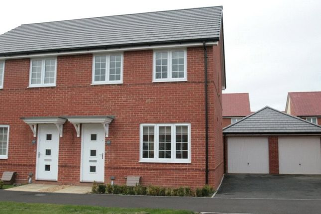 Thumbnail Semi-detached house to rent in Ernest Fitches Way, Littlehampton