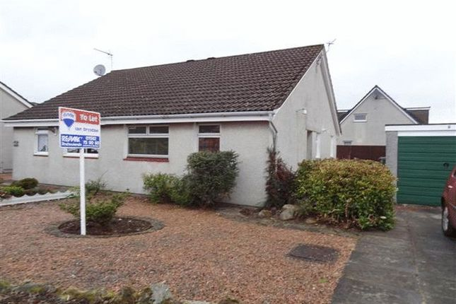 Thumbnail Bungalow to rent in Mcbain Place, Kinross