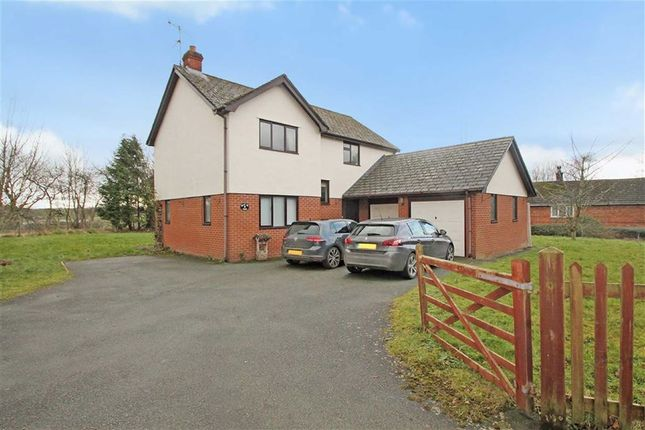 Thumbnail Detached house for sale in Llansantffraid