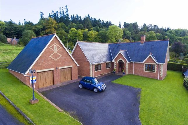 Thumbnail Detached bungalow for sale in Poplar Drive, Welshpool, Welshpool