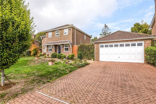 Thumbnail Detached house for sale in Gainsborough Drive, Sherborne