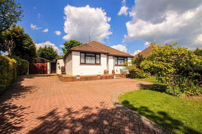 Thumbnail Detached bungalow for sale in The Ridge, Hastings, East Sussex