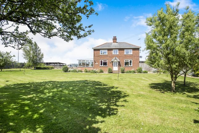Thumbnail Detached house for sale in Clockcase Road, Clenchwarton, King's Lynn