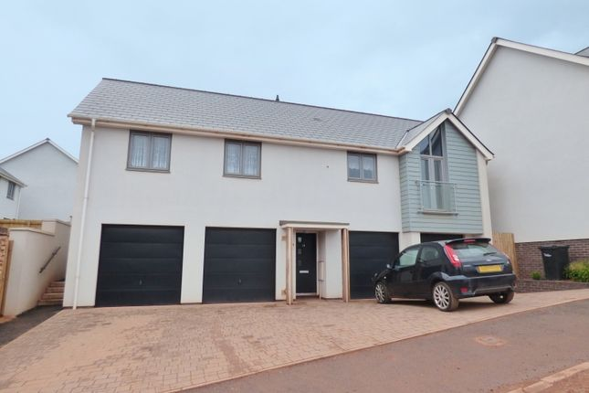 Thumbnail Detached house for sale in Plantation Way, Torquay