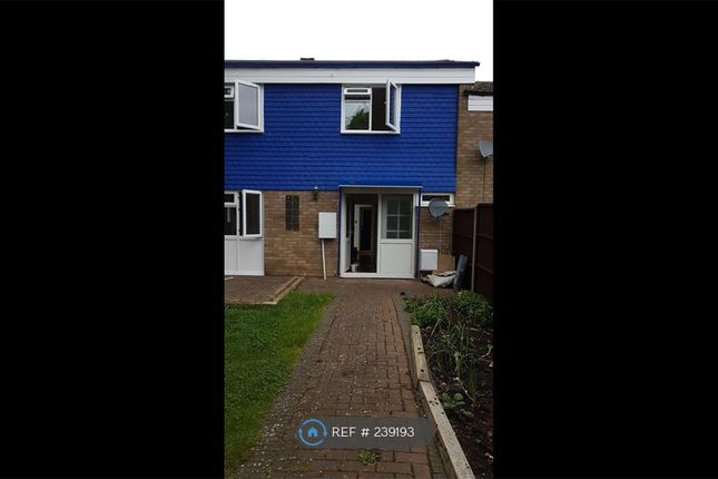Thumbnail Terraced house to rent in Jessop, Hertfordshire