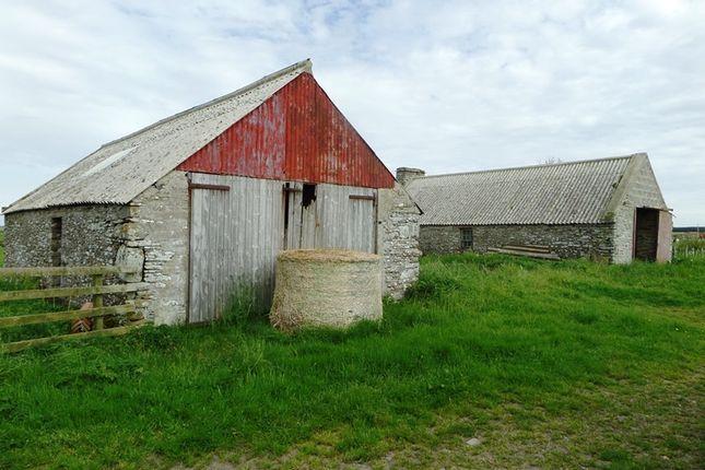 Thumbnail Land for sale in Rattar Farm, Dunnet