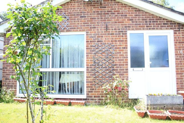 Thumbnail Semi-detached bungalow to rent in The Vale, Hythe, Southampton