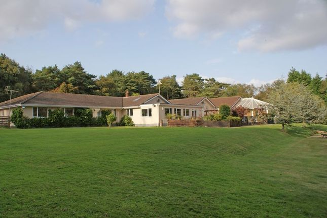 Thumbnail Bungalow for sale in Kennford, Exeter