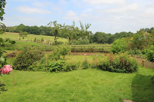 Thumbnail Detached house for sale in Angley Park, Angley Road, Cranbrook, Kent