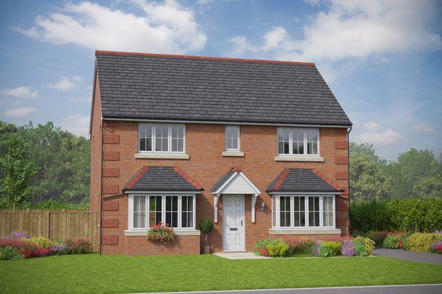 Thumbnail Detached house for sale in The Betws, Cymau Lane, Abermorddu, Flintshire